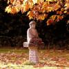 Philocafe – Pogovor o budizmu in mistiki