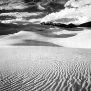 Poetika pustinje