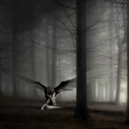 Anđeoska