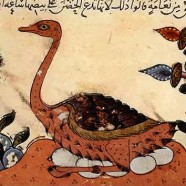 Knjiga o živalih
